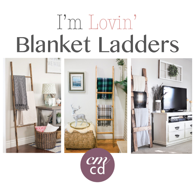 Blanket-Ladder-3